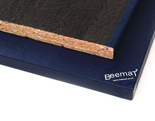 Beemat Wrestling/Judo Activities Gym & Safety Mattresses Multi-Purpose Mat by Beemat by BeeMat
