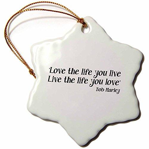 Live Ornament (3dRose LLC orn_163993_1 Porcelain Snowflake Ornament, 3-Inch,