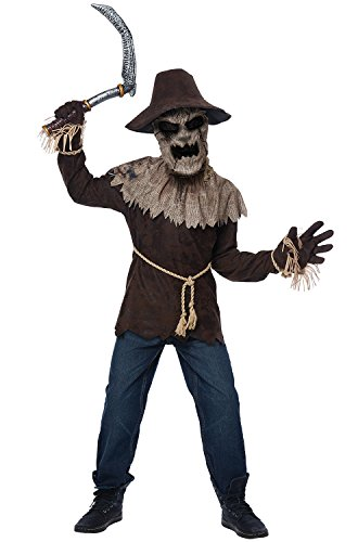 California Costumes Toys Wicked Scarecrow, Medium ()