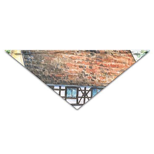 XSDAV Old House 1 Soft Pet Washable Triangle Scarf for Small and Medium Sized Dogs, Puppies, Kittens, Rabbits