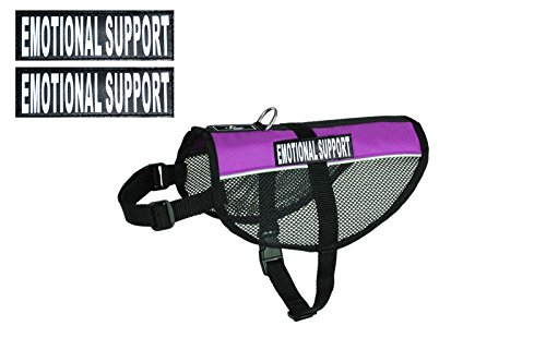 EMOTIONAL SUPPORT Service Dog mesh vest Harness Cool Comfort. Purchase comes with 2 reflective EMOTIONAL SUPPORT velcro pathces. PLEASE MEASURE your dog before ordering Purple Mesh Vest