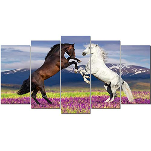 horse framed art - 8