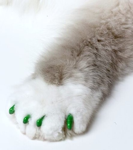 Image of Feline Soft Claws Cat Nail Caps Take-Home Kit, Large, Green
