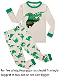 Dinosaur Big Boys Long Sleeve Pajamas Sets 100% Cotton Pyjamas Kids Pjs Size 12 Beige