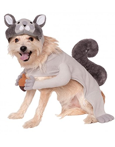 [Rubies Costume Company Squirrel Pet Costume, X-Large] (Dog Halloween Costumes Videos)