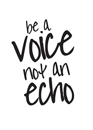 Be A Voice Not An Echo Decal Vinyl Sticker|Cars Trucks Vans Walls Laptop| BLACK |5.5 x 4.25 in|CCI1073
