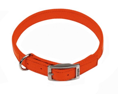 Remington Orange 1-Inch by 20-Inch Reflective Dog Collar