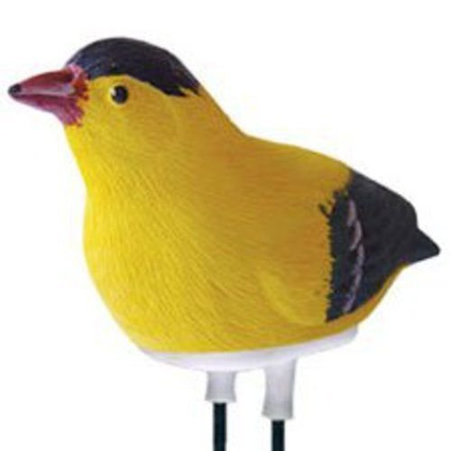 (Ship from USA) Singing Goldfinch Plant Pal