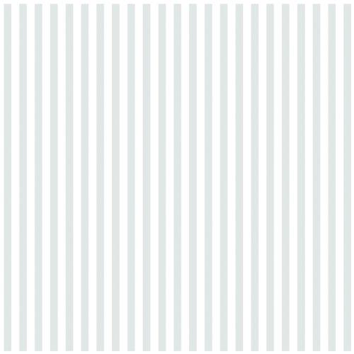 Bazzill Basics Glazed 12x12 Cardstock 15-Pack: Stripe Bazzill White (Bazzill Cardstock Glazed)
