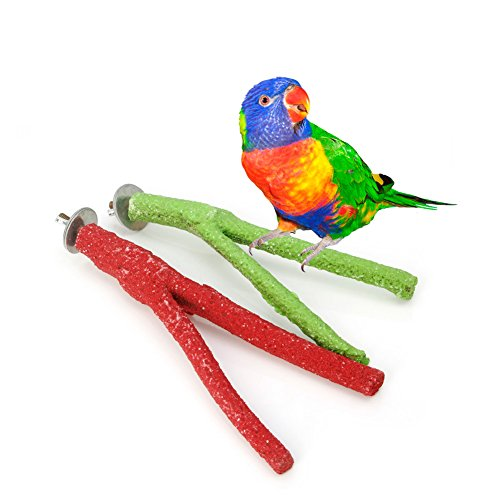 Parakeet Chew Toys : Nnda co pet bird claw paw chew toy cockatiel parakeet