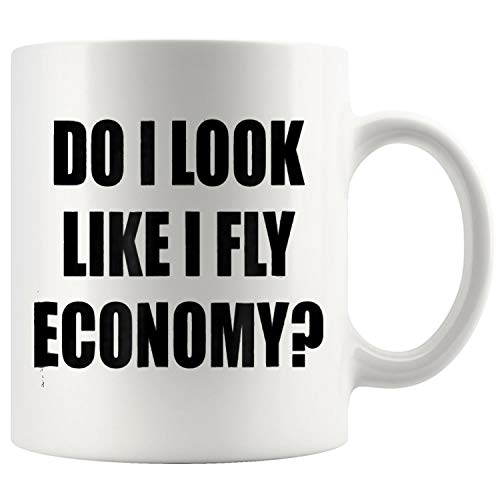 Do I LOOK Like I Fly ECONOMY Mug Coffee Mug 11oz Gift Tea Cups 11oz