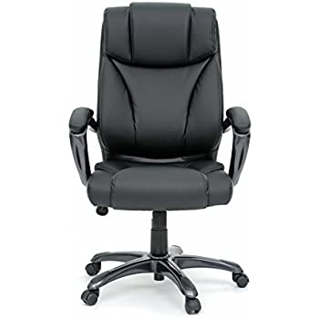 Amazon Com Sauder 411903 Deluxe Leather Executive Chair