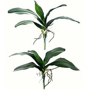 2 Pcs- Artificial Foliage Orchid Leaf Picks Simulation Phalaenopsis 32