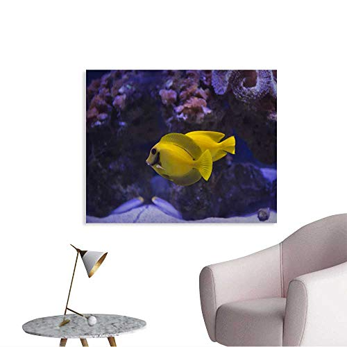 (Anshesix Paint Canvas for Kids Mimic Surgeon Fish Ready to Hang Wall Decoration 48