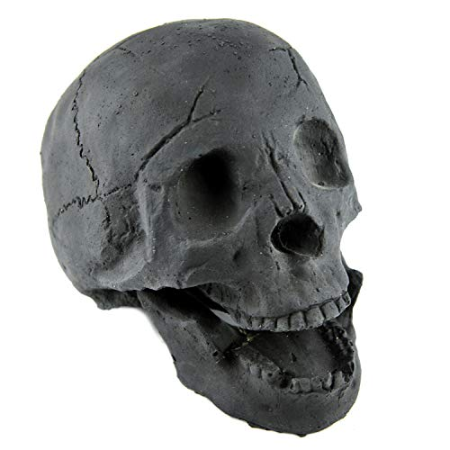 Myard Fireproof Human Fire Pit Skull Gas Log for NG, LP Wood Fireplace, Firepit, Campfire, Halloween Decor, Barbecue (Black, 1pk)