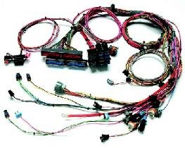 Painless Fuel Injection Wiring Harness for 1999 - 2002 Chevy Camaro (Wiring Painless Injection Fuel)