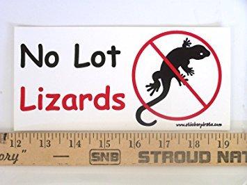 Lizard Sticker - Magnet No Lot Lizards Magnetic Bumper Sticker