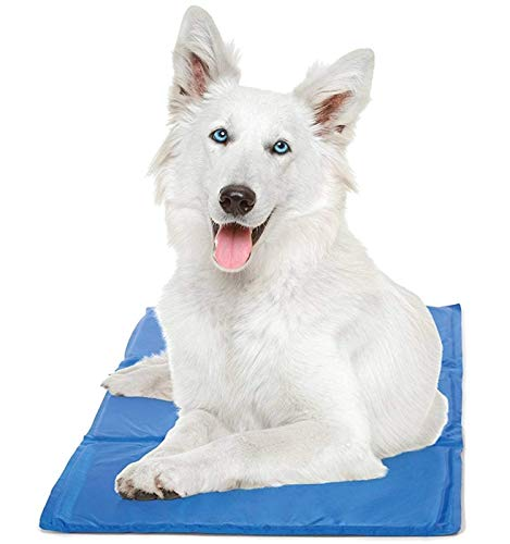 Hugs Pet Products Chillz Pressure Activated Pet Cooling Gel Pad - No Need To Freeze Or Chill - Keep Your Dog Cool and Reduce Joint Pain - (Best Cooling Dogs)