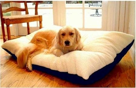 Majestic Pet 42-Inch by 60-Inch Rectangle Pet Bed X-Large, Khaki, My Pet Supplies