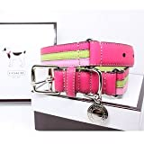 "COACH Striped Multicolor Leather Dog Collar with Engraveable Charm 60407 Limited Edition - Lime/Pink, Medium (13.5""-16.5"")"