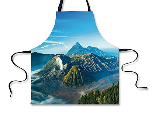 GOOESING BBQ Apron,Volcano,Mount Bromo Volcano During Sunrise in East Java Indonesia Majestic Nature,Sky Blue Green White, Apron (Barbara Wood Green City In The Sun)