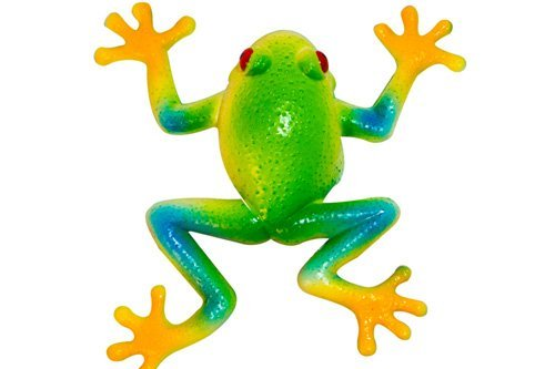 Stretchee Frog the Rain Forest Stretchable Frog by Evriholder
