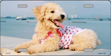 (Poodle Vanity Metal Pet Dog Breed Novelty License Plate Tag Sign)