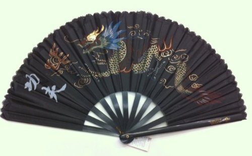 Black Plastic Kung Fu Tai Chi Training Fan with Dragon Design (Kung Fu Metal Fan)