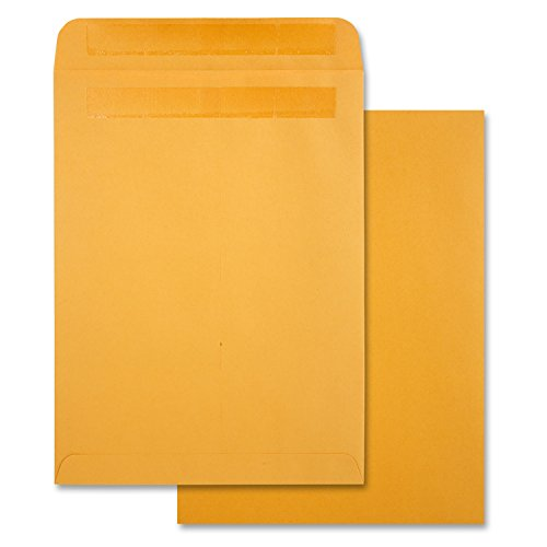 Quality Park Redi-Seal 9 x 12 Inch Kraft Catalog Envelopes 250 Count (43562)