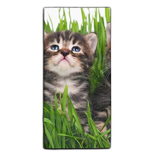 Microfiber Micronet Towels (Dominic Philemon Towel Animal Cats Kitten Grass Artistic Print 11.8 X 27.5 in Microfiber Towel)