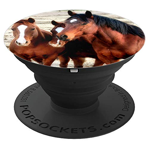 Quarter Horse Trio - PopSockets Grip and Stand for Phones and ()