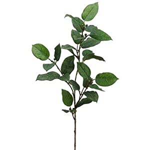 "Floral Home Artificial Lemon Leaf Spray - 27"" Tall - Set of 3 49"