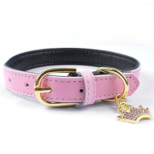 PET ARTIST Classic Padded Leather