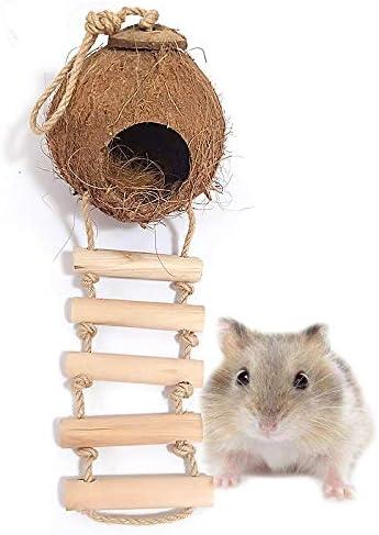 LYU-oag Cáscara de Coco Natural con Escalera de Madera Nido de cría de hámster Cama Columpio Juguete para Lovebird Pinzón Canario Pequeña Jaula de Ratas de Loro-B: Amazon.es: Hogar