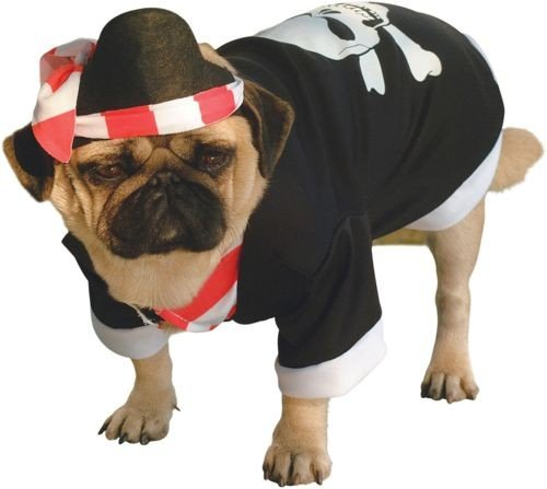 Pirate Dog Costume Size Small, My Pet Supplies