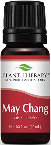 Plant Therapy May Chang (also known as Litsea Cubeba) Essential Oil. 100% Pure, Undiluted, Therapeutic Grade. 10 ml (1/3 oz).