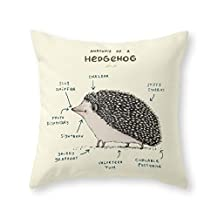"""Society6 Anatomy Of A Hedgehog Throw Pillow Indoor Cover (16"""" x 16"""") with pillow insert"""