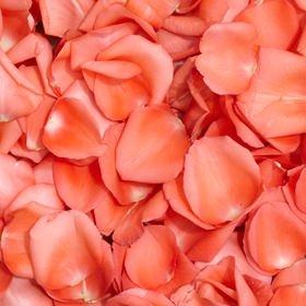 GlobalRose 5000 Fresh Orange Rose Petals - Real Petals with