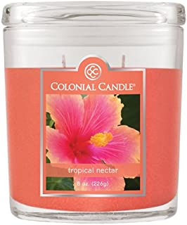 product image for Colonial Candle Tropical Nectar Jar Candle, 4 1/4 X 2 1/4 X 5, Orange