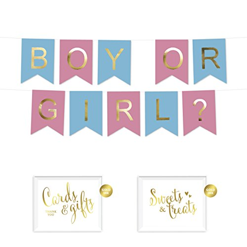 Andaz Press Shiny Gold Foil Paper Pennant Hanging Gender Reveal Baby Shower Banner with Gold Party Signs, Boy or Girl? Pink and Baby Blue, Pre-Strung, No Assembly Required, 1-Set