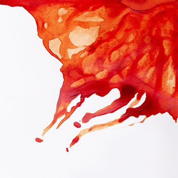 Winsor & Newton Drawing Ink Burnt Sienna .5 oz Bottle