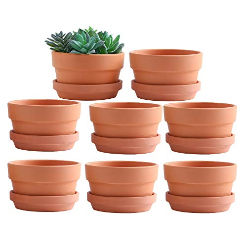 Yishang 4.4 Inch Shallow Terracotta pots with Saucer/Tray,Ceramic Clay Cactus/succlent Container with Drain Hole,Small…