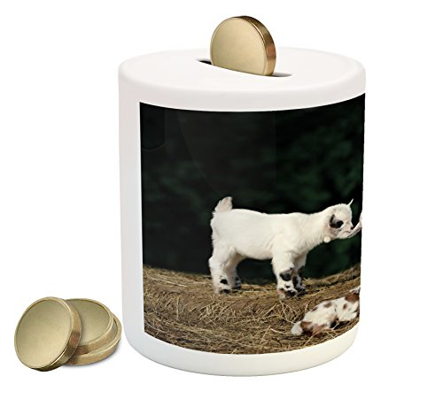 Rock The Cash Box (Animal Piggy Bank by Ambesonne, Cute Adorable Baby Sibling Goats playing Eachother on a Solid Rock in a Farm, Printed Ceramic Coin Bank Money Box for Cash Saving, White and Brown)