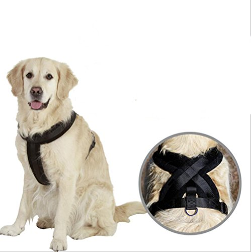 Zero Dog Vest Harness Adjustable Refletive Dog Harness No-Pull Outdoor Pet Vest Harness Breathable Comfortable And Durable Wire Harness Running Jogging - Proof Bell Explosion