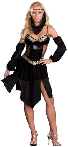 Sexy Harem Girl Costume - Womens Medium (Sexy Harem Girl Costumes)