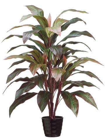 Amazon.com: Red Artificial Potted Cordyline Palm Floor House ... on alternanthera house plant, aphelandra house plant, pleomele house plant, araucaria house plant, colocasia house plant, red and green leaf house plant, cereus house plant, olearia house plant, windmill palm house plant, lantana house plant, iris house plant, kentia palm house plant, acacia house plant, crassula house plant, zinnia house plant, scilla house plant, sansevieria house plant, mandevilla house plant, camellia house plant, giant white bird of paradise plant,