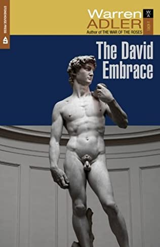 book cover of The David Embrace