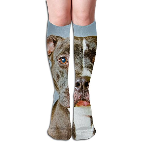 Long Stocking Old Dog Women's Over Knee Thigh Winter Warm Sexy Stocks Knitting Welt