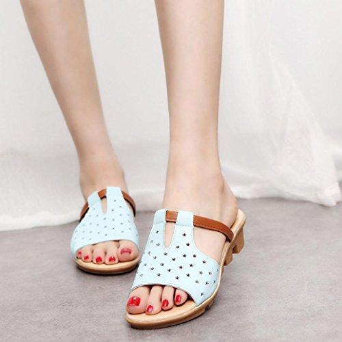 bescita Frauen Hausschuhe Weiblich Sandalen Fashion Solid Sommerstrand gleitet Schuhe (35, Blau)