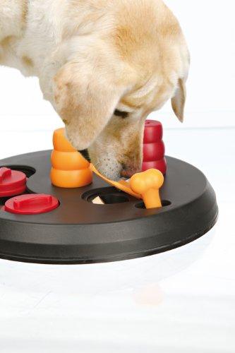 410Q5c28cjL - Trixie Pet Products Flip Board, Level 2